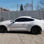 Autófólia - fehér Mustang